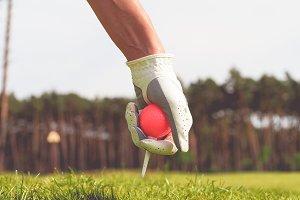Hand hold golf ball #2