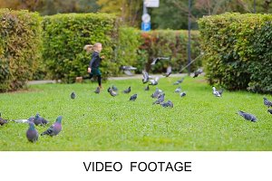 Little girl chasing pigeons on grass
