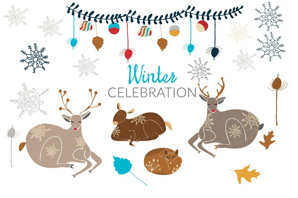 Winter  and Christmas Collection