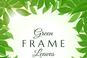 Fresh green leaves frame