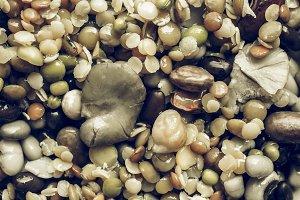 Beans vegetable salad vintage desaturated