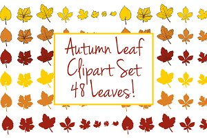 Autumn Leaf Clipart Set