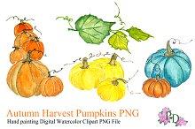 Autumn Pumkin Watercolor Clipart PNG