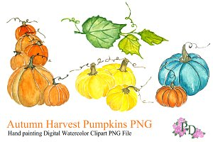 Autumn Pumkin Watercolor Clipart PNG