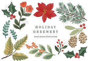 Holiday Greenery Illustrations