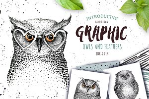 BIG Graphic Owls collection!