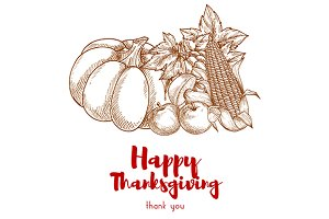 Happy Thanksgiving harvest