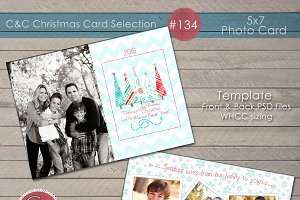 Christmas Photo Card Selection #134