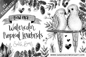 Watercolor Love Birds - B&W Pack