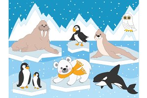 Vector Arctic Animals and Birds