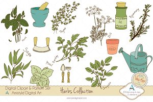 Herbs Collection Clipart&Vector