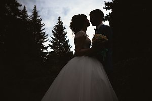 silhouettes of bride and groom kissing on the background  nature