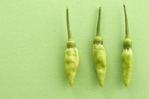 green chilli pepper