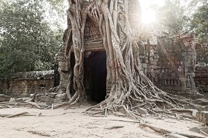 Angkor door.