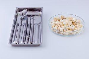 Dental instruments and teeth