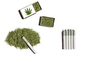 Rolled cigarettes with cannabis