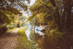 a photo of water canal in autumn