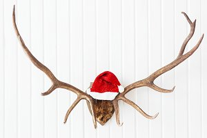 Deer antlers with red Santa's hat.