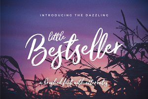 Little Bestseller Script Font
