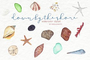Watercolor Clip Art - Sea Shells