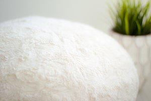Cream Cushion in White Interior