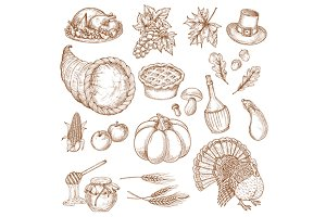 Thanksgiving day sketched objects