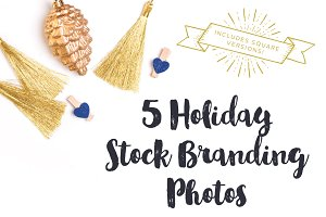Gold & Blue Holiday Brand Photos