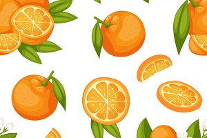 Orange fruit seamless pattern vector