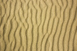 Rippled wind pattern on sand dune