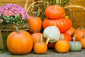 Display of fall pumpkin decorations