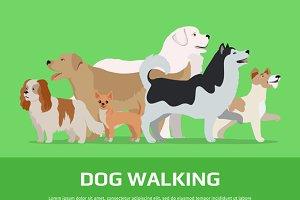 Dog Walking Concept