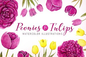 Peonies & Tulips Watercolor Elements