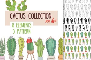 Vector cactus collection.