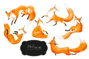Mr. Fox set
