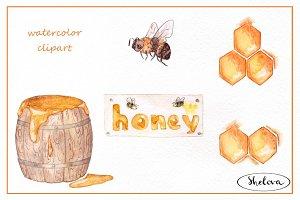 Honey. Watercolor set