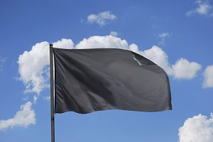 black flag. anarchy