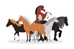 Horse Conceptual