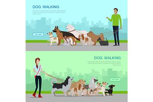 Professional Dog Walking