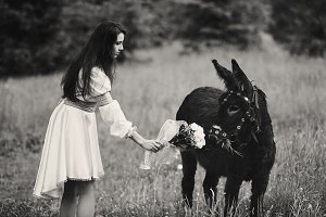 Bride and donkey