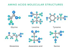 Molecular structures of amino acids