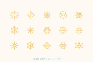 50 unique snowflakes icon