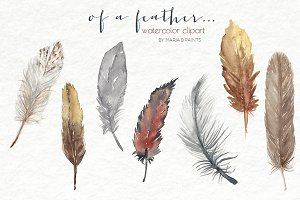 Watercolor Clip Art - Feathers