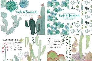 Watercolor Cacti & Succulent 4 pack