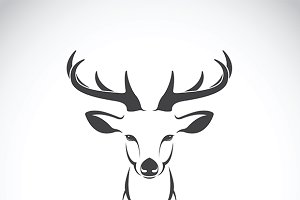 Vector image of a deer head design.
