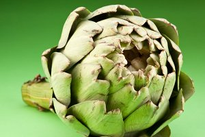 Artichoke on a green background