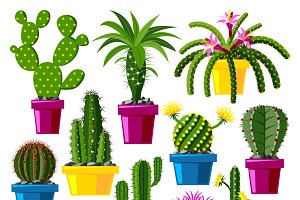 Cartoon cactus vector set