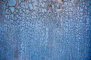 Close-up of blue painted tree bark