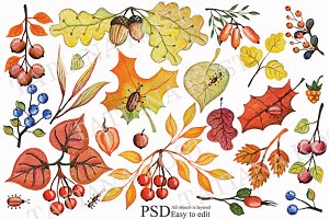 Autumn leaves, berries,branches set
