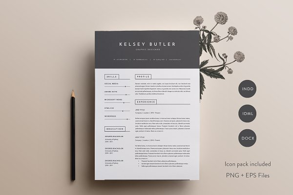 resume templates basic creations 3