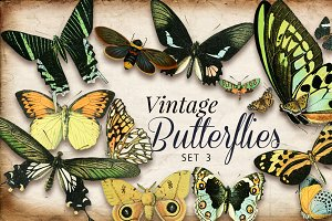 Vintage Butterflies Set 3